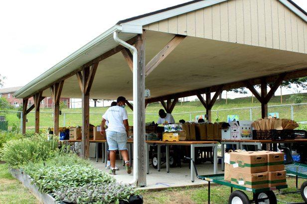 Bennett Farm10